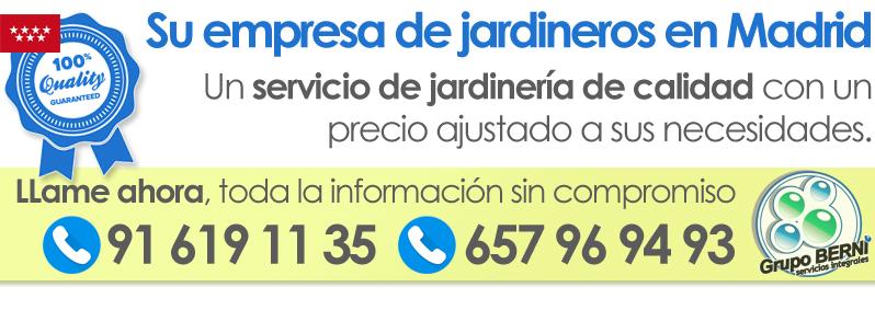 Empresa de jardineros en Madrid