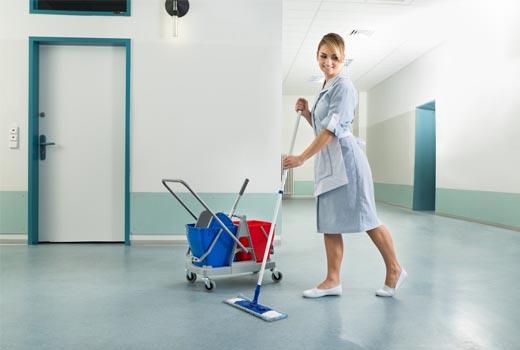 limpieza de elementos decorativos