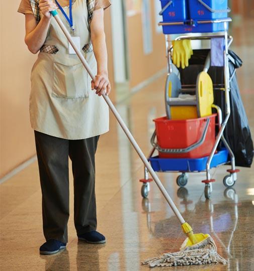 limpieza de obras